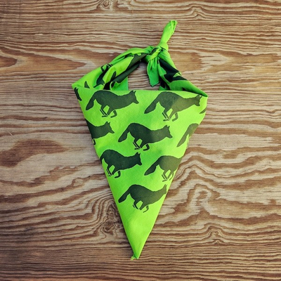 Runyon Canyon Apparel Lime Forest Signature Bandana Made In USA